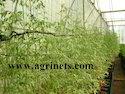 Horticulture Net