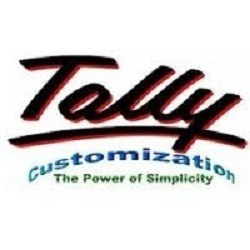 tally customization service
