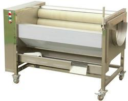 Ginger Washing and Peeling Machine