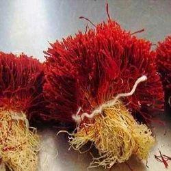 Saffron Herb