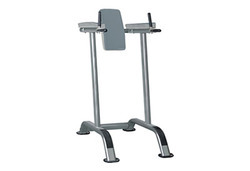 Leg Raise Machine