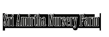 Sri Amirtha Nursery Farm