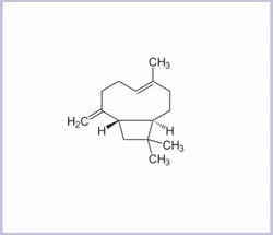 Beta Caryophyllene
