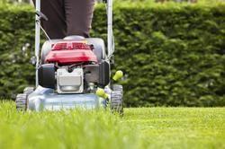 Lawn Maintenance Service