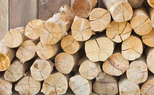 Tanzanian Teak Wood