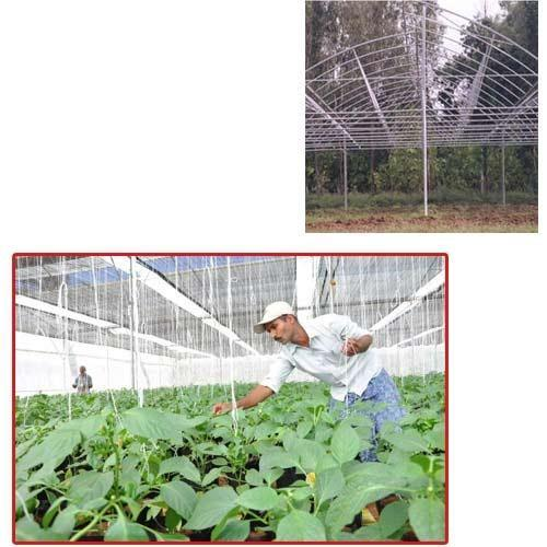 Poly Houses for Cultivation