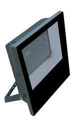 30w Regal Flood Light (Multi LED)