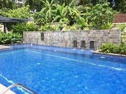 Swimming Pool Development