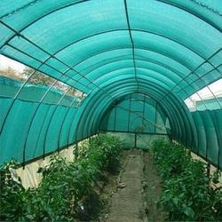 Poly Film Greenhouse
