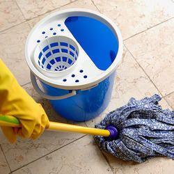 Lizol Type Floor Cleaner