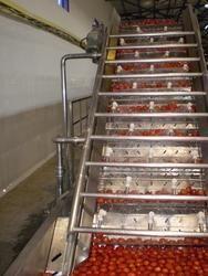 Tomato Paste Processing Machinery