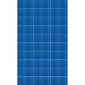 100 W Solar Photovoltaic Modules