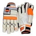 Cricket Batting Gloves - Signature Two