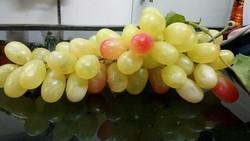 Hyperboles Artificial Fruits ( High Quality Grapes)