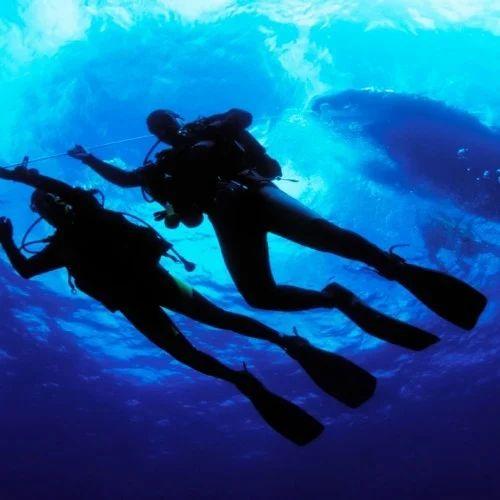 Underwater Survey