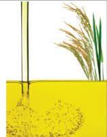 Refined Rice Bran Oil