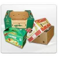 Printed Fruit Packaging Boxes