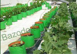 Terrace Gardening Kit