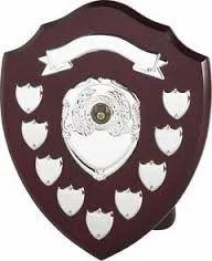 Sports Shield
