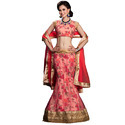 Indian Ghagra Choli