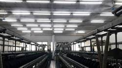 Humidification System For Textile Industry