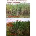 Active Silicon Organic Soil Conditioner for Sugarcane