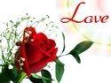 Customized & Personalised Flowers