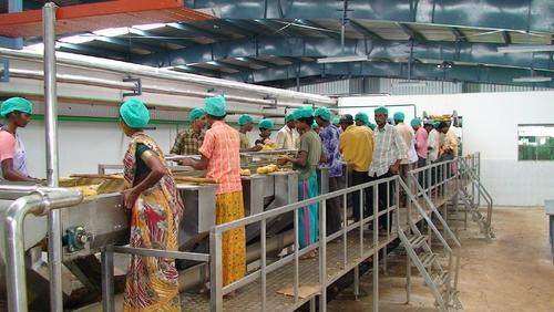 Mango Processing Plant Mango Pulp Processing Machinery