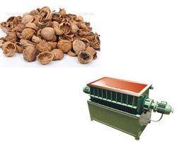 Wall Nut Shell