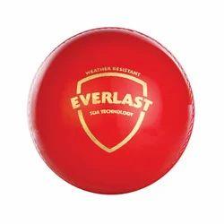 SG Everlast ( Synthetic) Cricket Ball