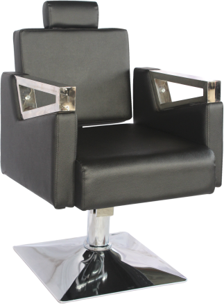 Deluxe Salon Chairs
