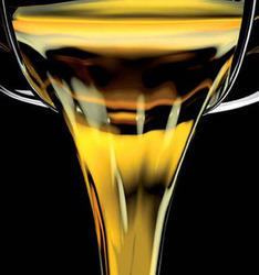Fuel Oil Stabilizer - Biocontrol RX