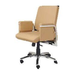 Fancy Luxury Chairs