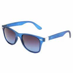 Blue Frames Sunglass