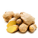 Zingiber Officianale - Ginger Extract