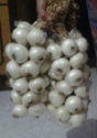 White Onion ( Season January to May)
