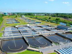 Sewage Treatment Plant ( STP )