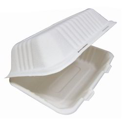 Sugarcane Food Container