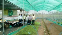 Tunnel Shade Net House