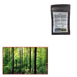 Vesicular Arbuscular Mycorrhiza Biofertilizer for Forest