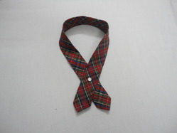 Dav Girls School Tie
