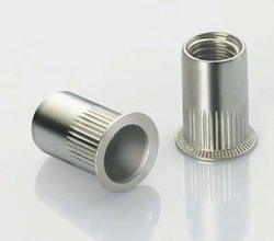 Stainless Steel Insert Nut