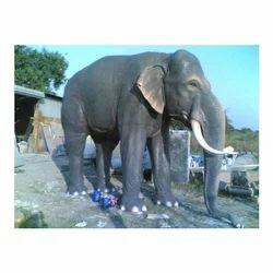 FRP Elephant