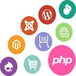 PHP MySQL Development Services