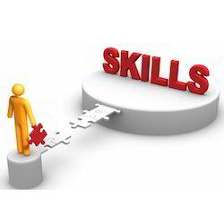 National Skill Development Service