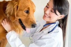 Veterinary Franchisee In Tamil Nadu
