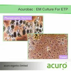 EM Culture for ETP
