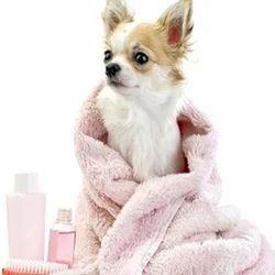 Pet Shampoo