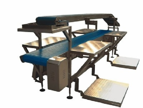 Packing Conveyors Conveyor Table Manufacturer From Noida
