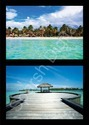 3D Wallpaper Collection of Beach View